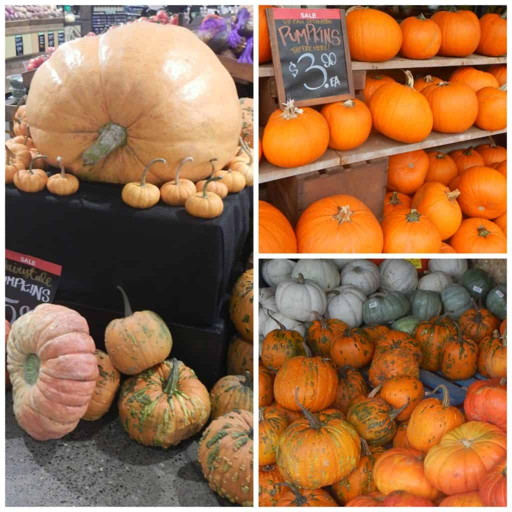 Main & Vine Pumpkin