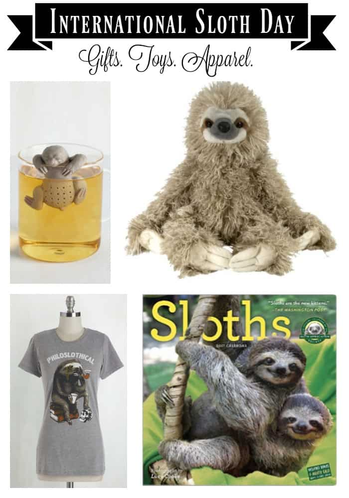 international sloth day  sloth