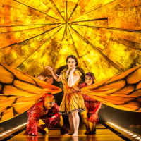 Goldstar: Cirque du Soleil – Luzia Discounted Tickets (Redmond, WA) – Pre-Sale!