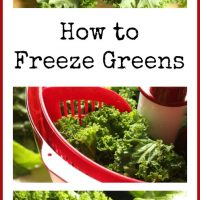How to Freeze your Greens {and a couple ideas for how to use them!}