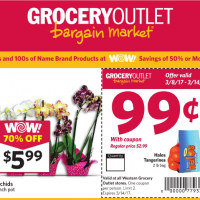 Grocery Outlet Ad 3/8 – 3/14: Halos Tangerines (2 lbs) just $0.99!