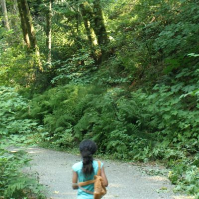 Cool Hikes with Kids: Sequalitchew Creek Trail