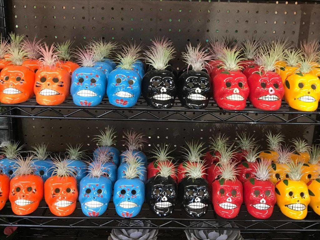 Skulls with Plants