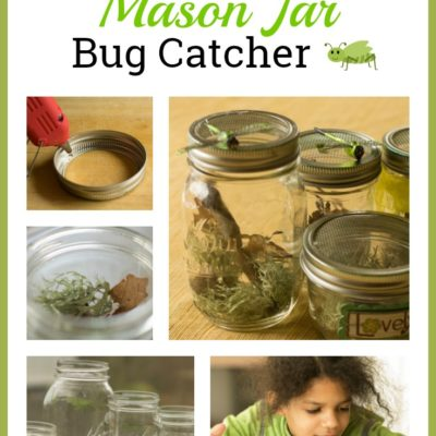 How to Make a Mason Jar Bug Catcher
