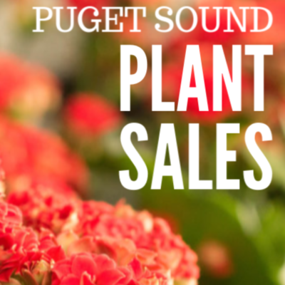 Puget Sound Area Spring Plant Sales – 2019