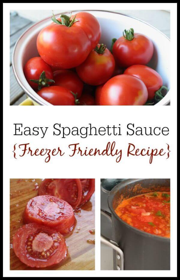 How to make delicious, freezer-friendly spaghetti sauce