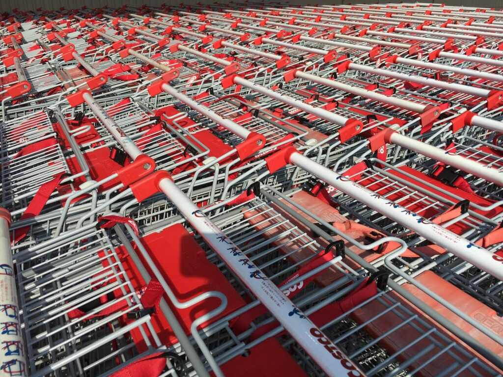 Costco shopping carts